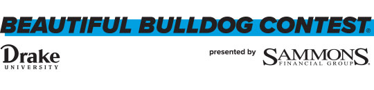 Beautiful Bulldog Contest Banner