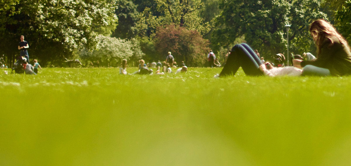 people sitting in the grass in a park