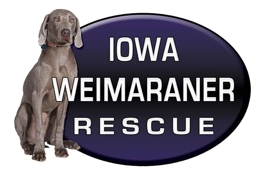 Iowa Weimaraner Rescue